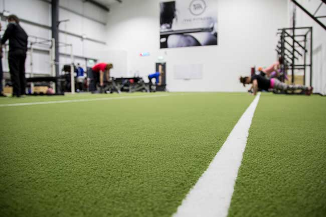 Low shot of the gym indoor grass area